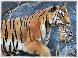 tiger-mum with tiger-baby by die-rina