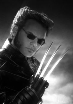 My personal Wolverine by Laudano