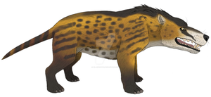 Andrewsarchus by Lil-Cheetah