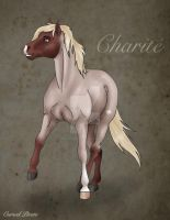 Charite Reference by the-Cursed-Pirate