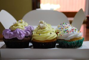 Cupcake Delivery by jatorra