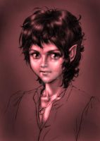 Frodo by SapphireGamgee