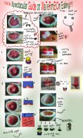 How to Eat Watermelon by Nyehca