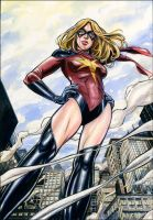 Ms. Marvel by funrama