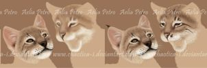 Lynx Cub Painting WIP Series by Chaotica-I