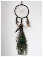 A Little Peacock - dream catcher by SaQe