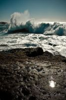 Point Lobos California 18 by bkitten1