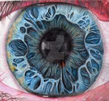 2010 Colour Pencil Eye by Sonicgirl582