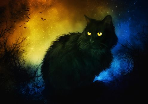 Salem Night by dianar87