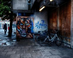 3 Faces of Aalborg by aglezerman