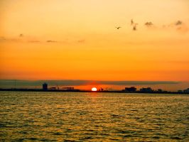 Tampa Bay Industrial Sunrise by lost-remains