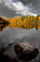 Fall colors by emmanueldautriche