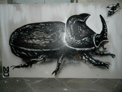 Beetle by MAUscabola