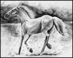 Running White Horse by philippeL