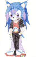 Jess the Hedgehog by DarkGuardian17