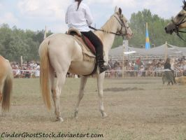 Hungarian Festival Stock 073 by CinderGhostStock