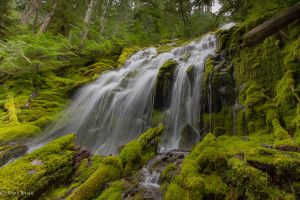 Upper Proxy Falls by DreaErvin