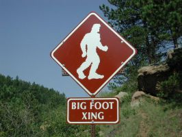 Bigfoot Crossing by froggynaan