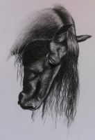 friesian horse in charcoal by Horsenart95