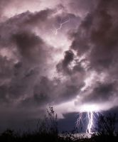 Natures Power by shear-atmos-fear