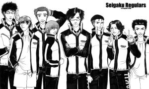 Seigaku Regulars by mirime