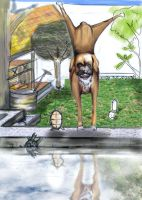 my funny pets by Muutha