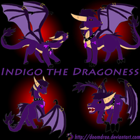 Indigo the Dragoness Wallpaper by Doomdrao