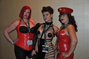 Sarah Diavola and two others at FetCon Tampa, Fl. by enonorez
