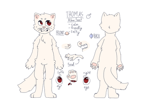 Thomas the ferret! ref 2017 by weeaboo-house