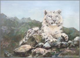snow leopard by Jack---Shadow