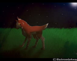 Art Trade: majowolf by BlackRoseDarkWay
