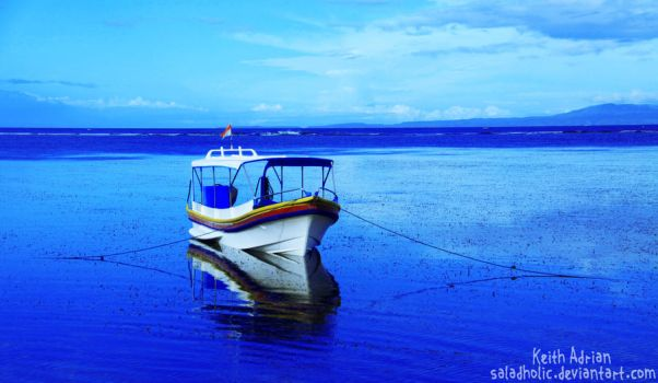 Alone In the deep blue sea by Saladholic