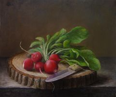 Knife and red radishes by marcheba