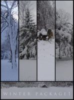Winter Package 1 by ArrsistableStock