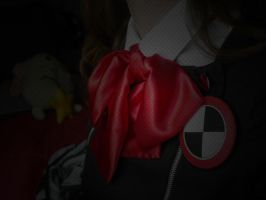 My Cosplaying Persona new ID by OblivionMaster