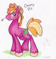 CherryPit by PitterPaint