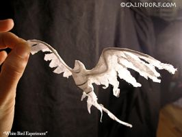 White Bird experiment by Galindorf