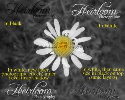 Heirloom Photography Logo 2 by GothicAmethyst