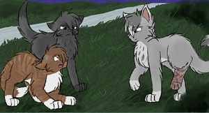 Cinderpelt Discovers the Truth by CascadingSerenity