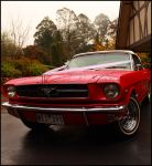 Mustang Front View by Eternal-Polaroid