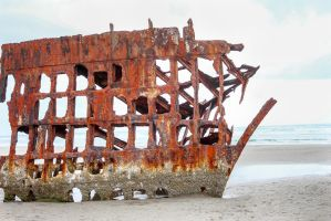 The wreckage of the Peter Iredale by ringmale
