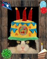 happy birthday for my three year old fluff by Claudia008
