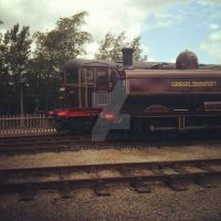 L.94 and Sarah Siddons (RAILFEST 2012) by AferVentus