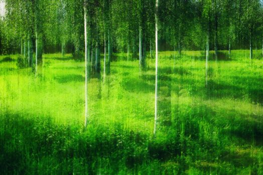 green by JrFish
