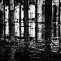 In the City, Always a Reflection... by rvanzandt
