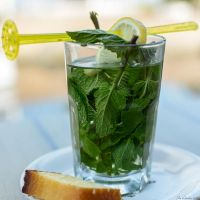 Fresh Mint Tea by JacqChristiaan
