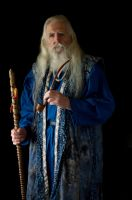 2014-08-01 Wizard Blue 02 by skydancer-stock