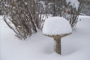 Snowy Bird Bath 2 by natureflowerstock