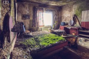 Green Mattress by Dapicture