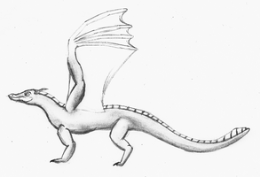 Dragon Pencil Drawing by TheUnknownety
